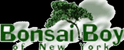 Bonsai Boy of New York logo